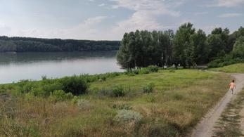 23,6 hektár fát vágnak ki a paksi Duna-híd építése miatt Natura 2000-es területen