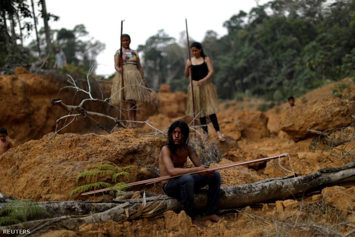 Az amazóniai Mura törzs tagjai egy erdőirtás során letarolt területen