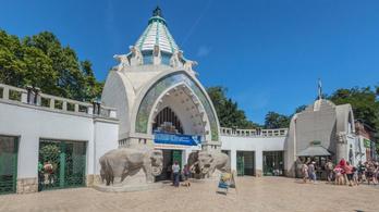 Rendkívüli intézkedéseket vezetett be a Fővárosi Állatkert