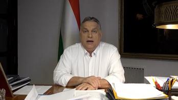 Elkezdődik a magyar koronavírus-gyógyszer fejlesztése