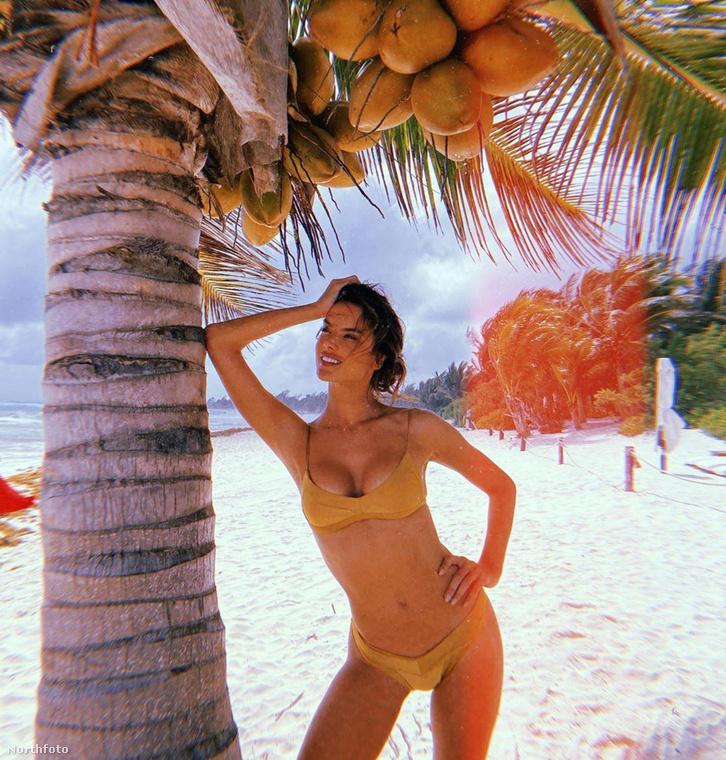 Mekkora kókuszdiók! Vigyázz, rád ne essen, Alessandra!