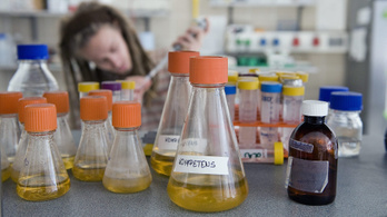 Magyar gyógyszert fejlesztenek a koronavírus ellen