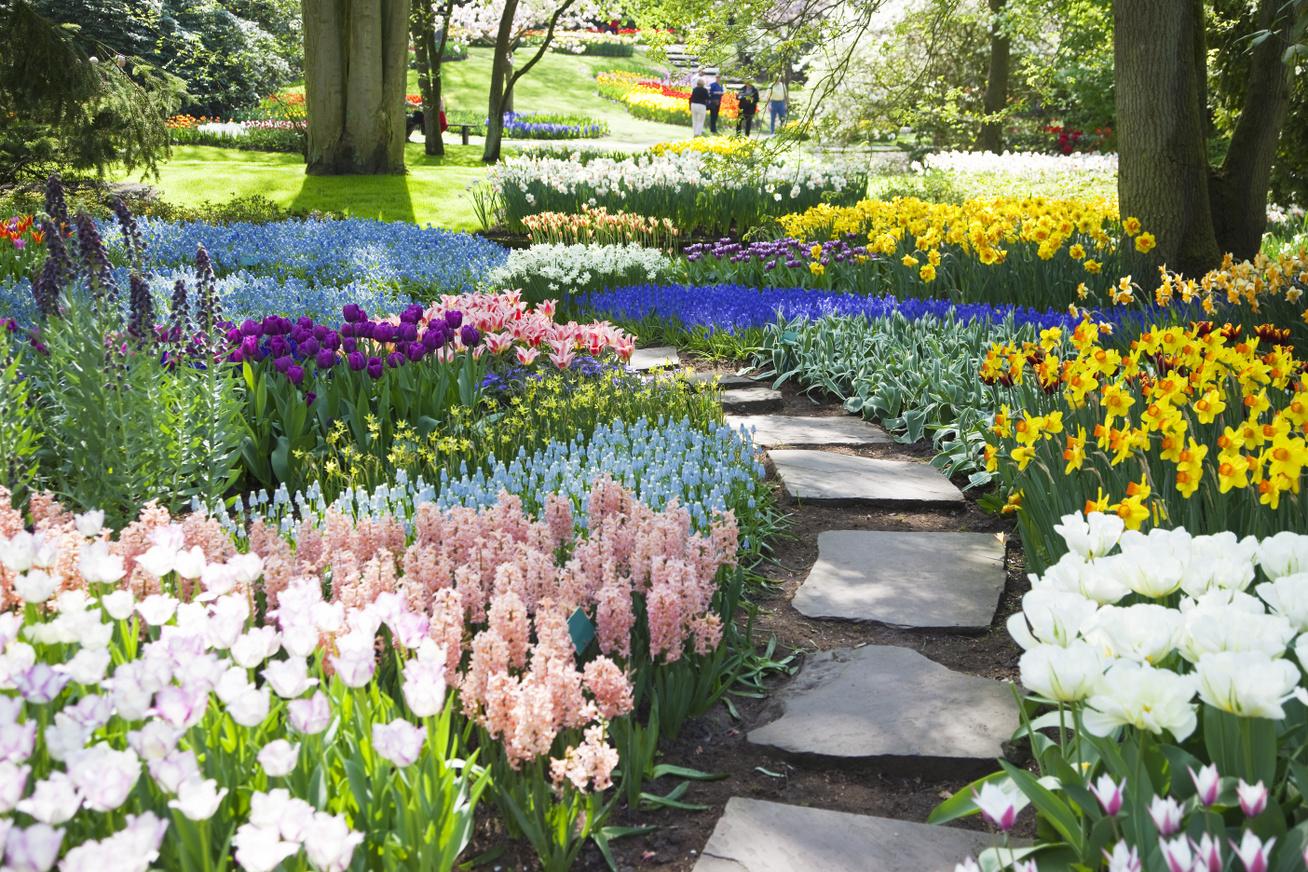 szép kert nyitó