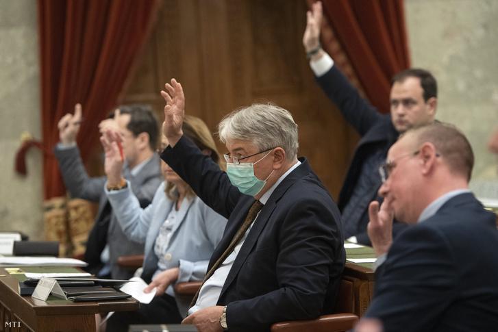 Pesti Imre, az Országgyűlés népjóléti bizottságának fideszes tagja (k) a testület ülésén az Országház Delegációs termében 2020. március 17-én