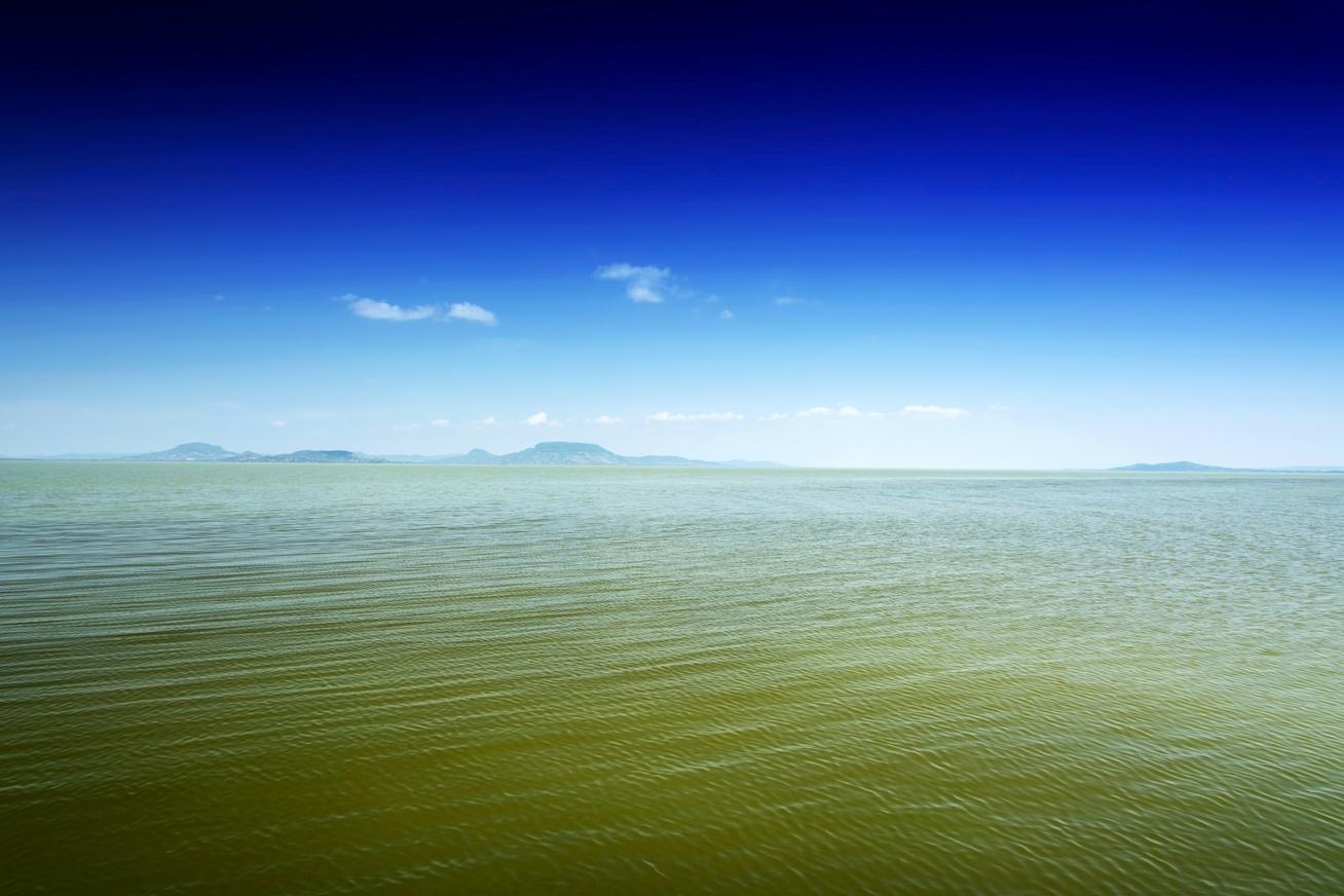 balaton zöld víz