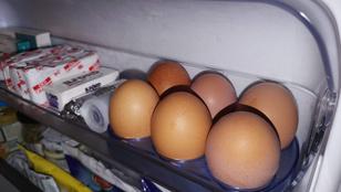 Hűtőben kell-e tartani a tojást, vagy felesleges?