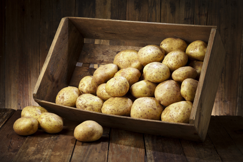krumpletta belső