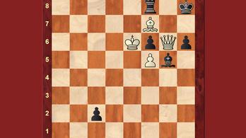 A világbajnok összerakott egy sakkfeladványt, rájön mire gondolt?