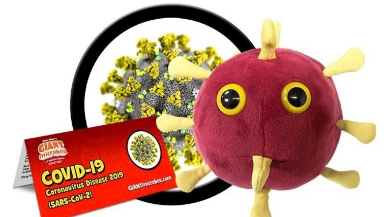 coronavirus-cluster