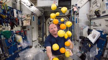 Egy űrhajós tippjei home office-hoz