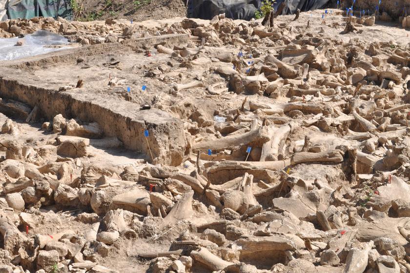 25 ezer éves gigászi épületet találtak Oroszországban: nem tudni, mi lehetett a mamutcsontokból álló építmény