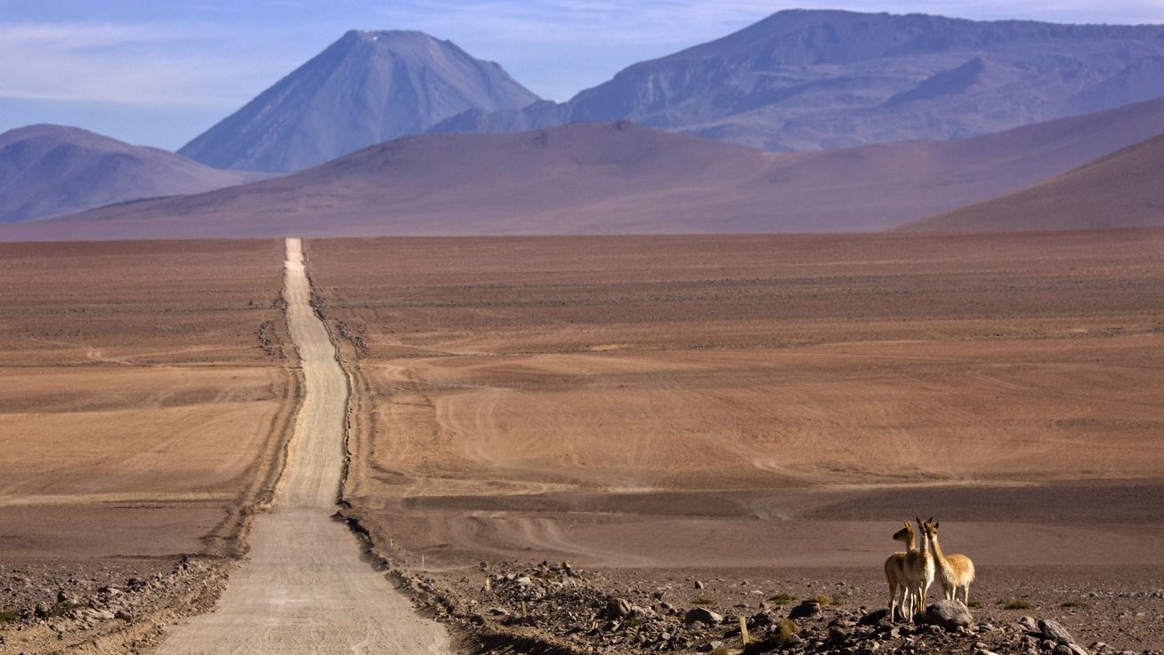atacama sivatag országút