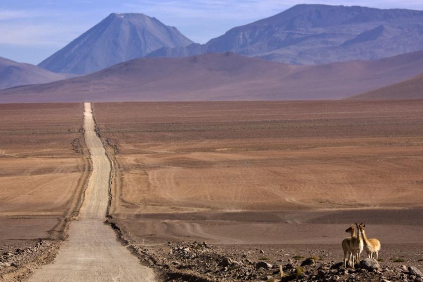 A Föld legszárazabb vidéke egészen különleges hely: teljesen fényszennyezésmentes az Atacama-sivatag