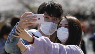 Sok japán megszegi a karantént a virágzó cseresznyefák előtti szelfizésért