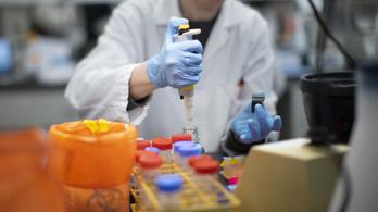 Koronavírus-vakcinát tesztelnek Temesváron