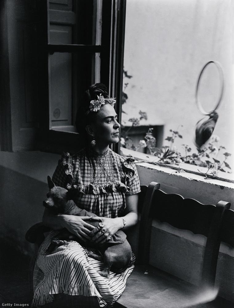 Ehhez a képhez nincs pontos dátum, de Frida Kahlo festőművésznő látható rajta a kutyájával