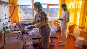 Félmillió fölé emelkedett a koronavírussal fertőzöttek száma