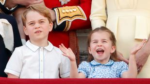 Tapsolt Vilmosék mindhárom gyereke az orvosoknak, Harry hercegék LA-be költöztek