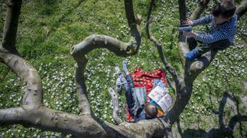 Tavaszi napsütésben süttethetjük magunkat