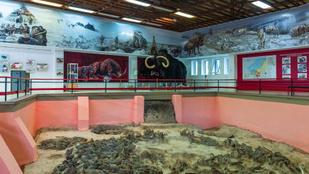 A 25 ezer éves, mamutcsontokból épített ház mellett elbújhat Stonehenge