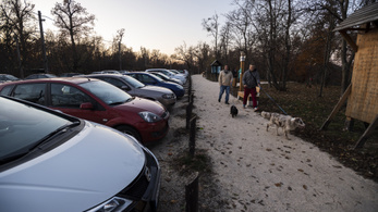 Szerdától lezárják a Normafán a murvás parkolót