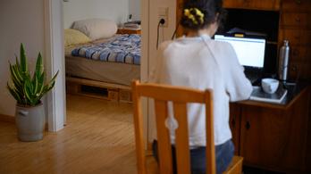 Az otthonról dolgozókra is rászálltak a kiberbűnözők