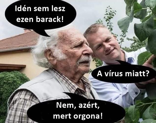 Bálint gazda a Facebook-oldalán osztotta meg a belőle készült mémet, amivel korábban már találkozhattunk különböző formákban, de most a koronavírusra specializálták.