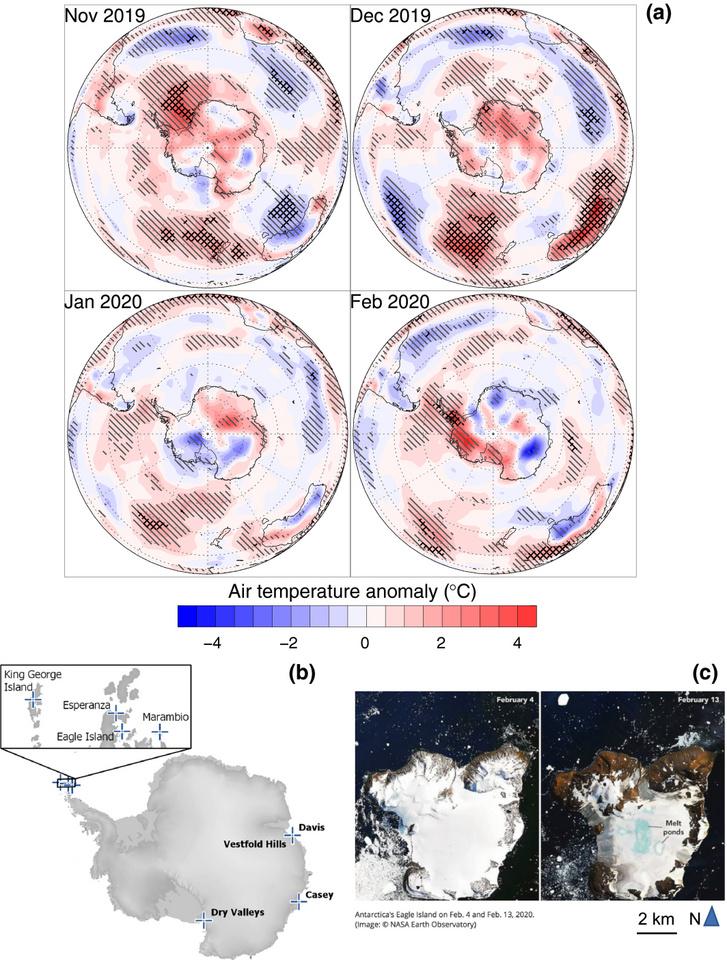 (a) Hőmérsékleti anomáliák a 2019-20-as nyári időszakban, (b) a kiugróan magas hőmérsékleti értékek helyei, (c) a Sas-szigeten tapasztalt drámai jégolvadás február 4-i és 13-i műholdképeken