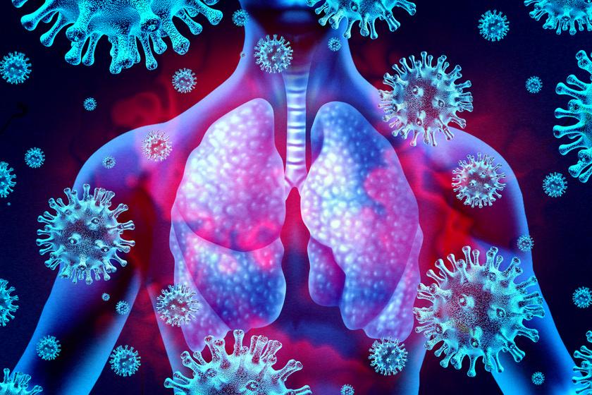 koronavirus-tudo