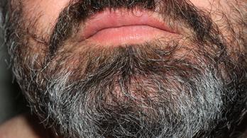 Tudta? Járvány idején nem jó szakállasnak lenni!