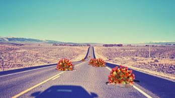 Autózás a járvány után: ki bukik, és kinek van esélye?