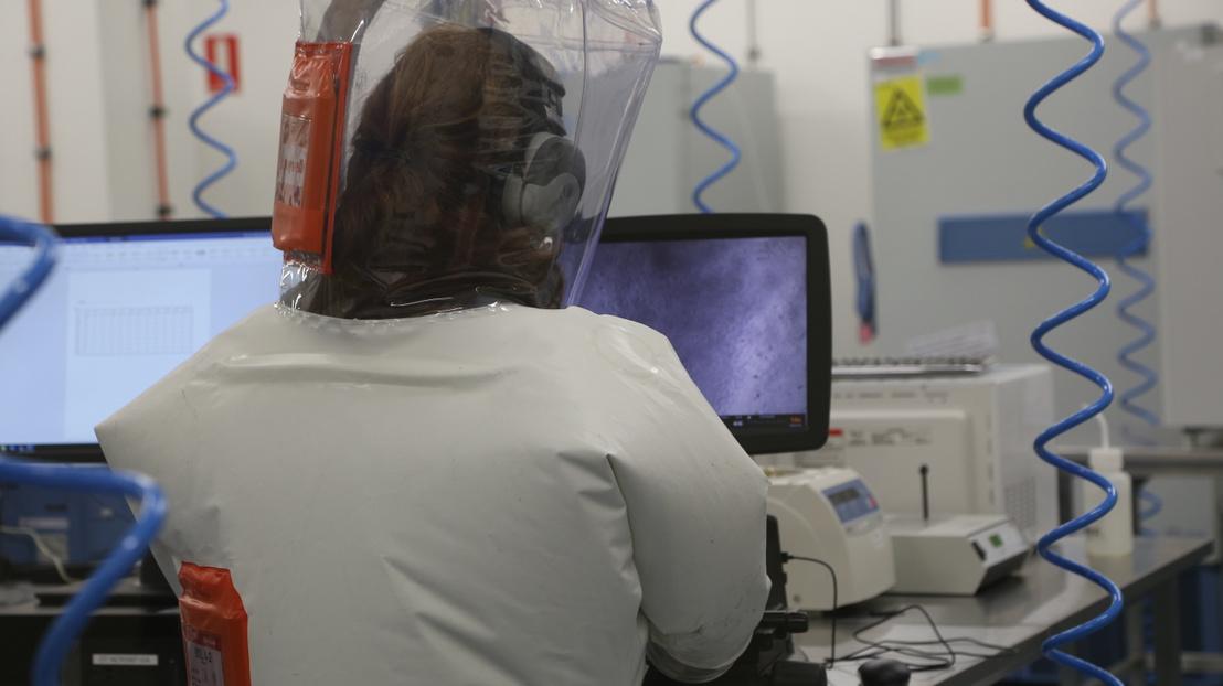 Kutató vakcinákat tesztel a CSIRO állategészségügyi laboratóriumában