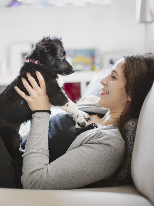 Mit jelent, ha a kutya megszakítja a gazdival tartott szemkontaktust?