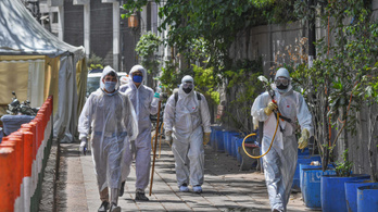 Indiában orvosokat kövezte meg, miközben koronavírus-gyanús beteget kezeltek