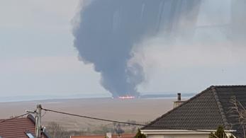 Két hektár nádas égett le a Fertő-tó osztrák oldalán