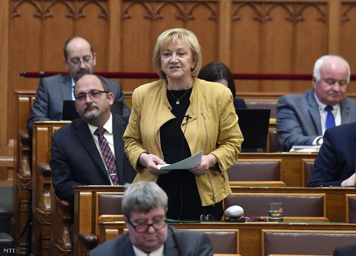 Schmuck Erzsébet az LMP képviselője napirend elõtt felszólal az Országgyûlés plenáris ülésén 2020. február 24-én.