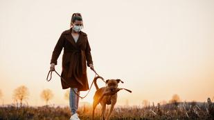 Tippek kutyasétáltatáshoz a járvány idejére