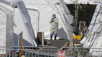 Nemsokára közparkokba temethetik a koronavírus áldozatait New Yorkban