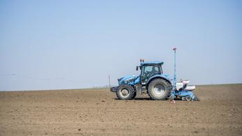 Kritikus szárazság sújtja a mezőgazdaságot