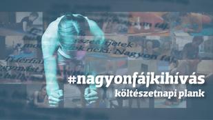 Ünnepeld plankeléssel a magyar költészet napját!