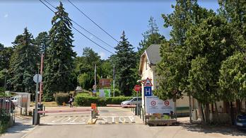Kásler Miklós menesztette a Rehabilitációs Intézet főigazgatóját is