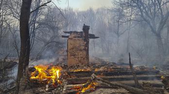 Greenpeace: Az erdőtűz Csernobilban másfél kilométerre van a szarkofágtól