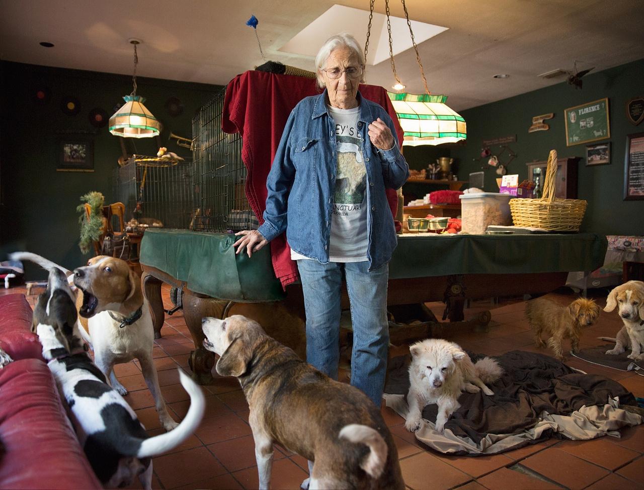 """""""Azt láttam, hogy van valamilyenfajta szeretet minden általam megfigyelt ember és állat közti kapcsolatban"""" - mondja Seiler. """"Tanúja voltam annak, hogy mindenkinek van egy elmesélni való története."""""""