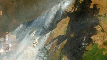 A tavalyi tüzek után idén még több esőerdőt irtanak ki Amazóniában