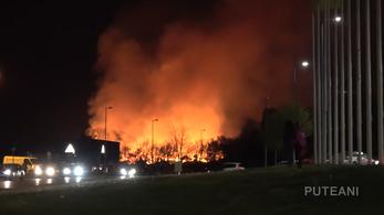 Háromhektárnyi terület lángolt Szombathely külvárosában