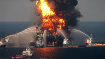 Az élővilág a mai napig megszenvedi minden idők legnagyobb olajkatasztrófáját