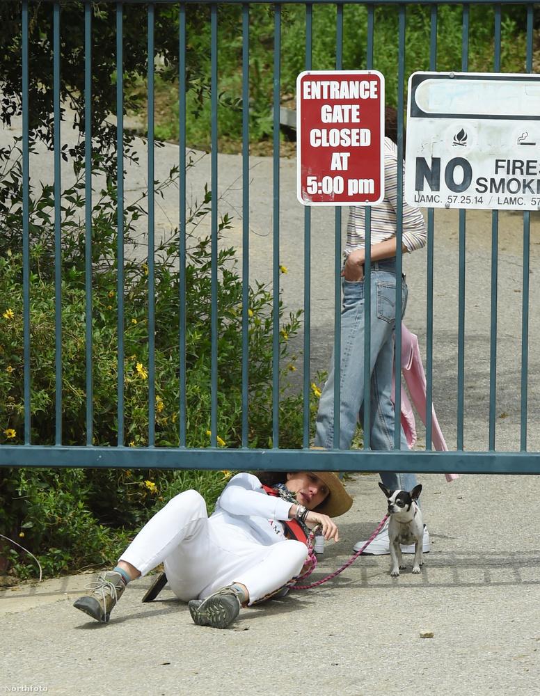 Lehet, ha előre tudja, hogy a földön fog mászni, nem fehér szettben indul kutyát sétáltatni.