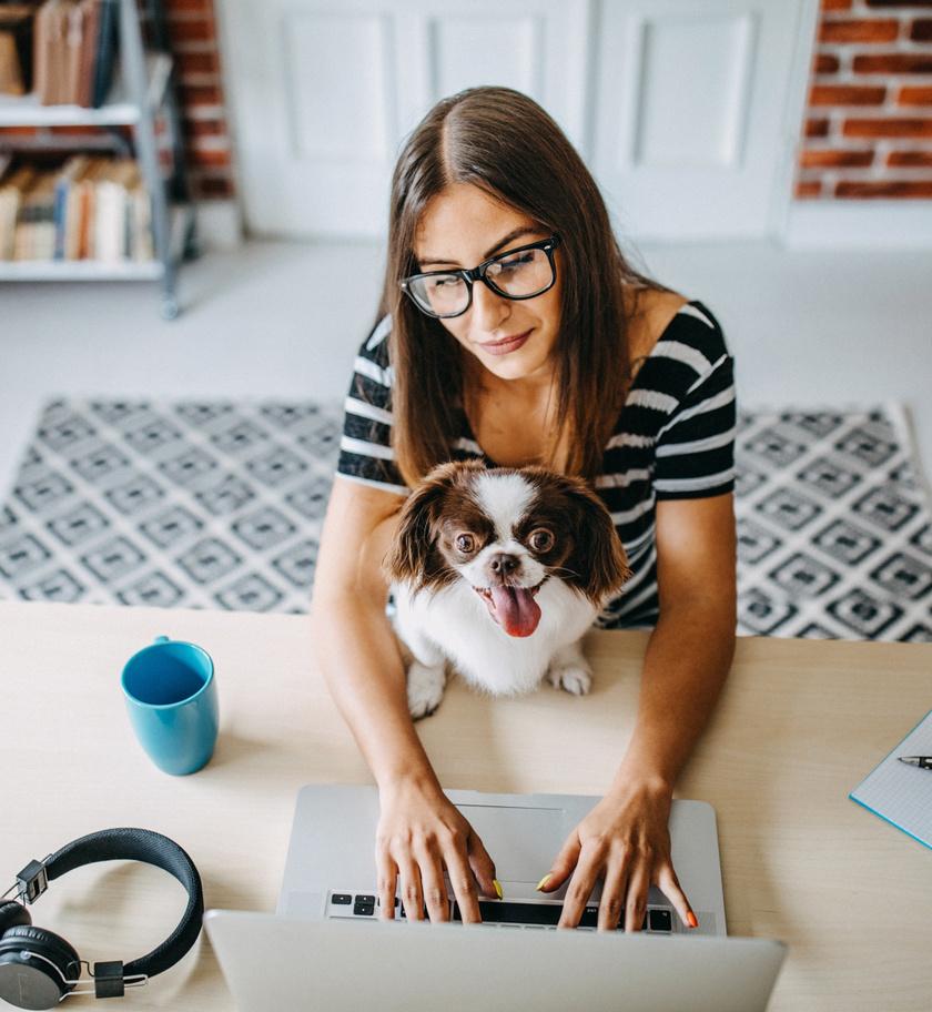 kutyaval-otthonrol
