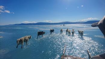Évezredekkel ezelőtt leszakadt jéglemez világít rá a jégsapkák rohamos olvadásának veszélyeire