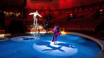 Egymillió eurós kormánytámogatást kap a magyar cirkuszművészet